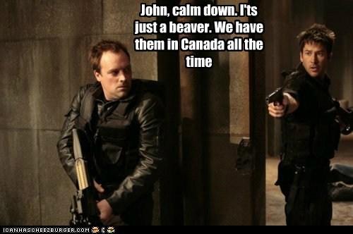 beaver,calm down,Canada,david hewlett,dr rodney mckay,joe flanigan,john sheppard,Stargate,stargate atlantis