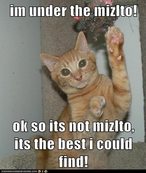 im under the mizlto!  ok so its not mizlto, its the best i could find!