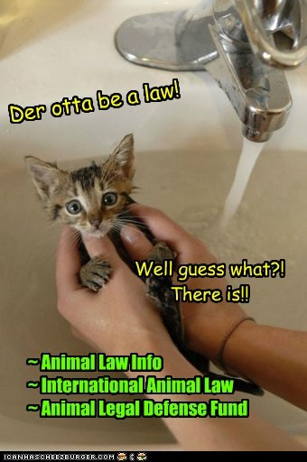 And there are laws ya know!