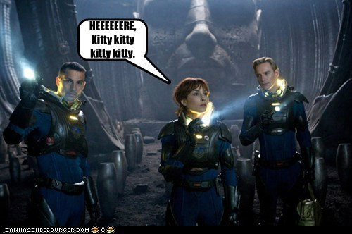 Aliens,cat,here kitty kitty,jonesy,kitty,michael fassbender,Noomi Rapace