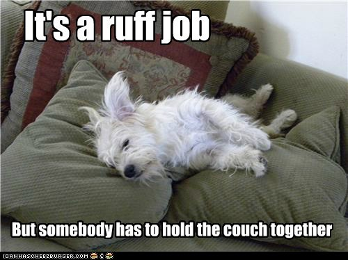 It's a ruff job But somebody has to hold the couch together