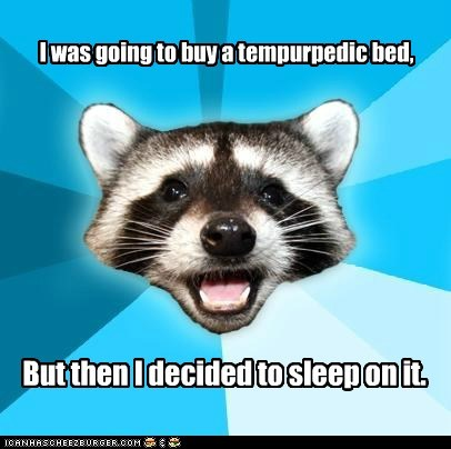 Lame Pun Coon: The People at Sleep Country were Pissed