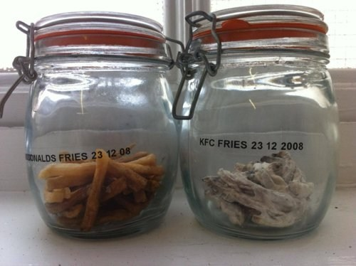 French Fries Showdown,Science Experiment,test of time