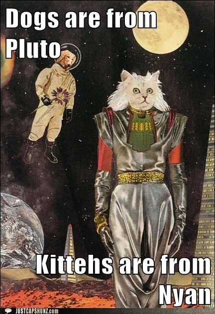 caption contest,cat,cats are from nyan,dogs,dogs are from pluto,idgi,intergalactic,men are from mars,mixed media,nyan,outer space,planets,pluto,whats-going-on-here,whoa,woman are from venus,wtf