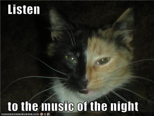 Listen    to the music of the night