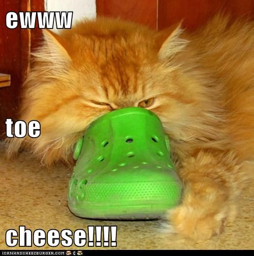 ewww  toe  cheese!!!!