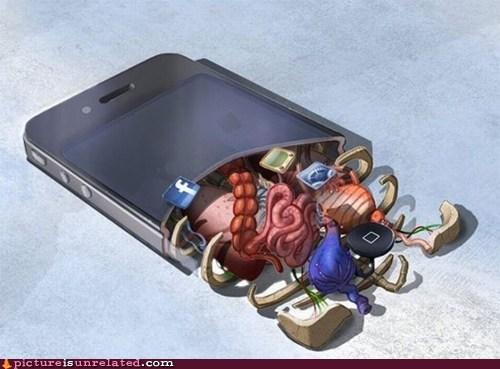 ipod,organs,wtf,xray
