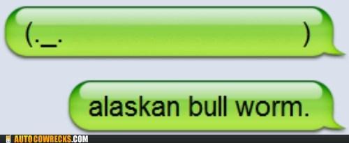 alaskan bull worm,animal,emoticon,whale,worm,worms