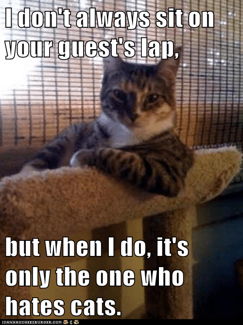 The Most Interesting Cat in the World: I Especially Love Searching Out Your Allergic Friends