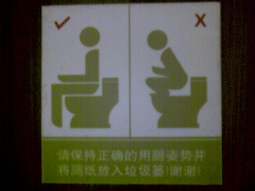 I'd like to meet the person who uses the toilet this way