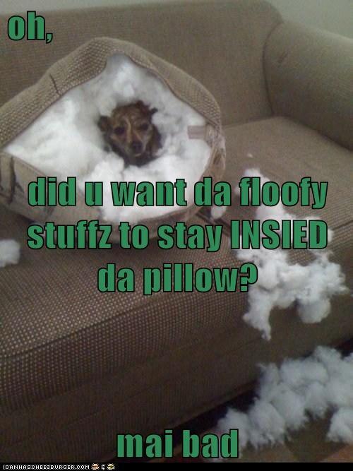 oh,  did u want da floofy stuffz to stay INSIED da pillow? mai bad