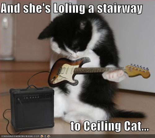 And she's Loling a stairway  to Ceiling Cat...