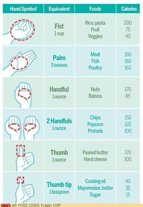 Chart,examples,guide,hand,infographic,portion sizes