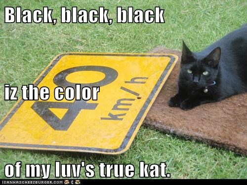 Black, black, black iz the color of my luv's true kat.