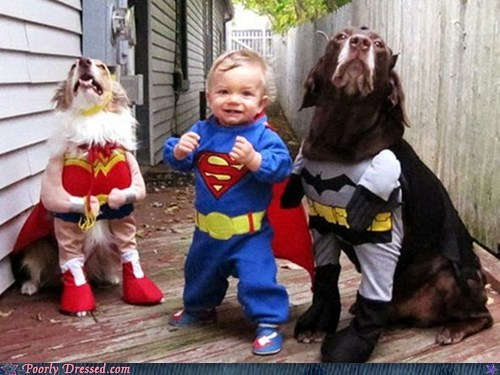 batman,cosplay win,dogs,kids,superman,wonder woman