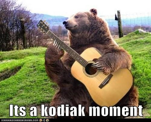 Its a kodiak moment