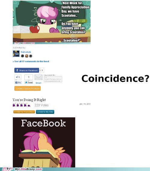 coincidence,good job,mod trying to be funny,my little brony,ponies,saturday