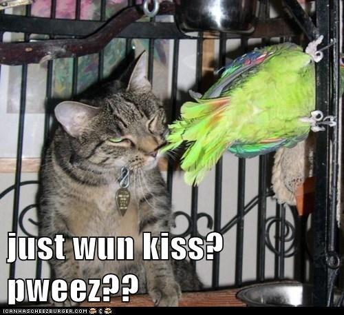 just wun kiss? pweez??