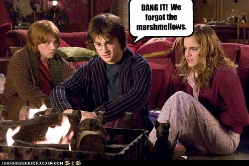 campfire,dang it,Daniel Radcliffe,emma watson,forgot,Harry Potter,hermione granger,marshmallows,Ron Weasley,rupert grint