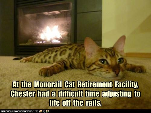 At  the  Monorail  Cat  Retirement  Facility,  Chester  had  a  difficult  time  adjusting  to life  off  the  rails.
