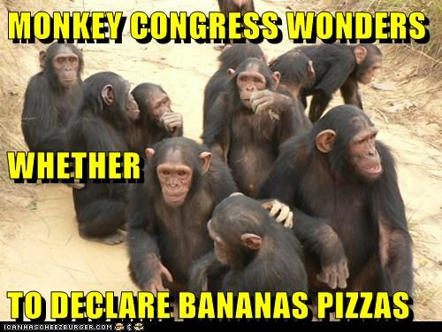 MONKEY CONGRESS WONDERS WHETHER  TO DECLARE BANANAS PIZZAS