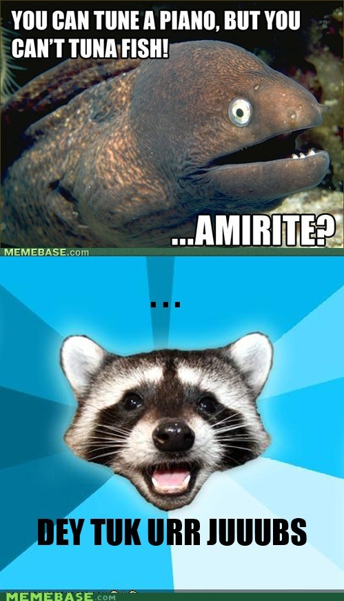 Save Lame Pun Coon from extinction!