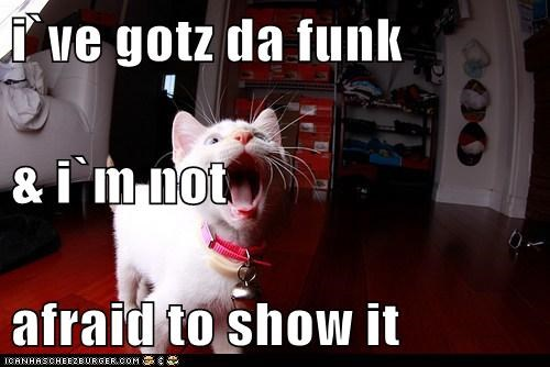 i`ve gotz da funk & i`m not afraid to show it