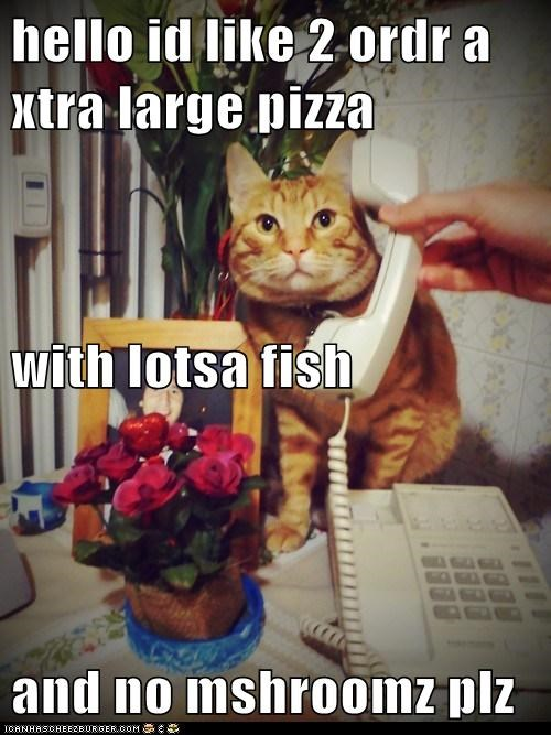 hello id like 2 ordr a xtra large pizza with lotsa fish and no mshroomz plz