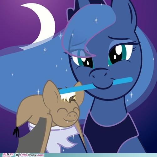 Brushie Brushie Luna