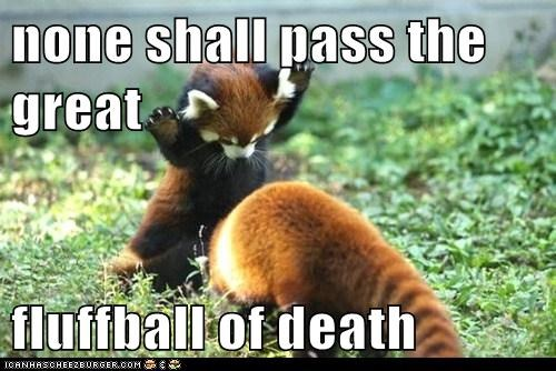 none shall pass the great  fluffball of death
