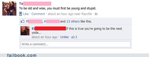 Wise Idiot