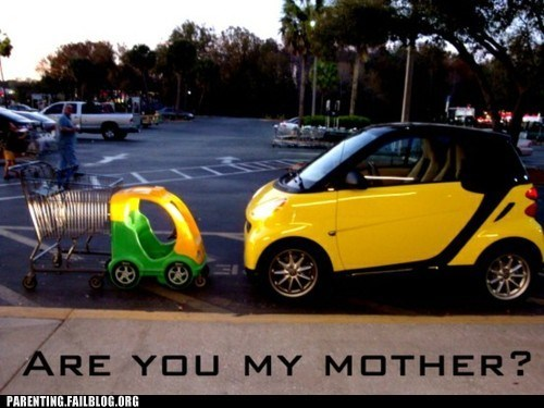 are you my mother,horsepower,same thing,smart car,toy car