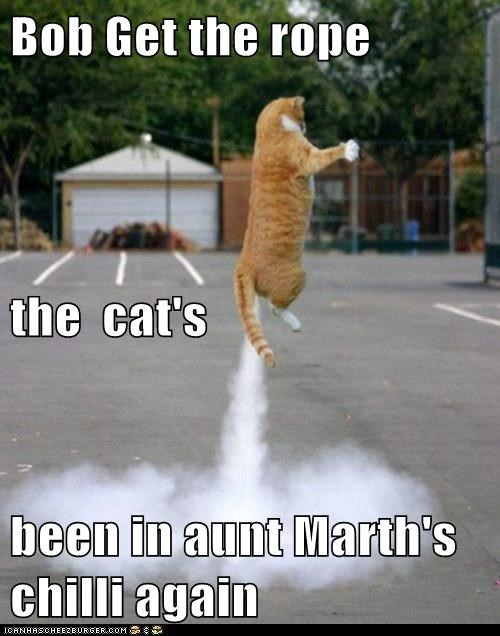 again,aunt,caption,captioned,cat,chili,flatulence,fuel,get,jet,request,rope