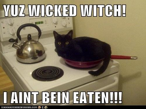 YUZ WICKED WITCH!  I AINT BEIN EATEN!!!