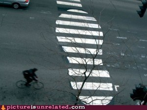 Crosswalk for Giants