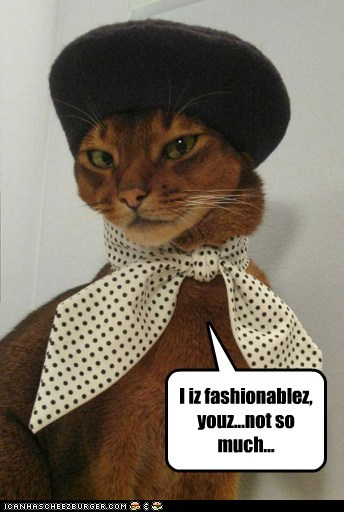 Fashion Kitteh