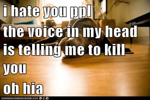 i hate you ppl the voice in my head is telling me to kill you oh hia