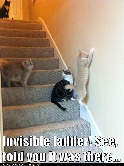 Invisible ladder! See, told you it was there...