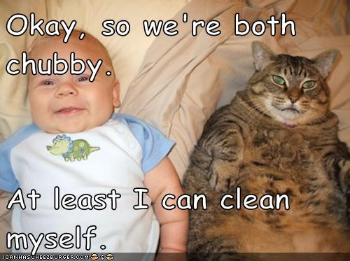ability,advantage,baby,best of the week,both,can,caption,captioned,cat,chubby,clean,comparison,Hall of Fame,self