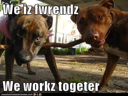 We iz fwrendz  We workz togeter