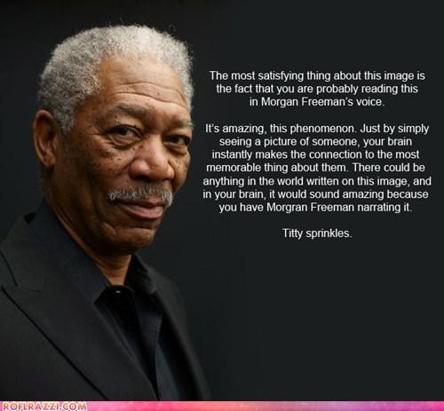 actor,celeb,funny,Morgan Freeman