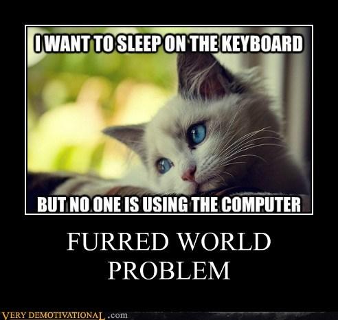 cat,First World Problems,furry,hilarious