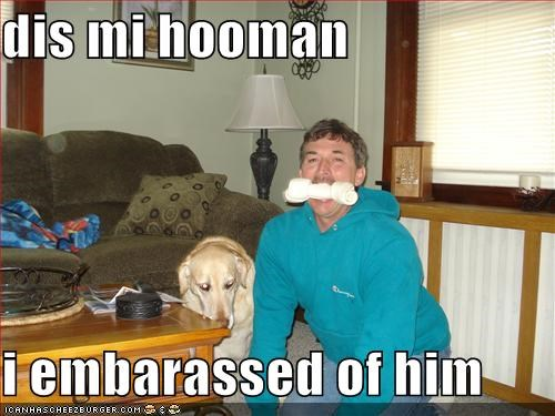 dis mi hooman  i embarassed of him
