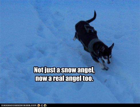 Off to teh Snow Angel partee