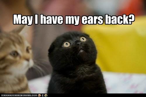 I will not eavesdrop again. Promise.