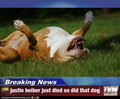 Breaking News - justin beiber just died so did that dog