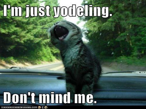 I'm just yodeling.