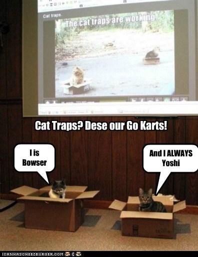 Cat Traps? Dese our Go Karts!