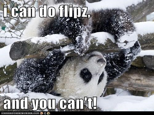 i can do flipz,  and you can't!