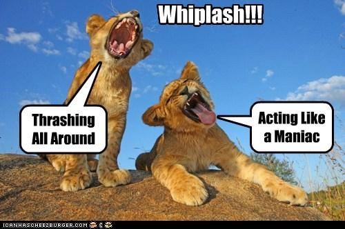 Whiplash!!!
